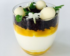 Cheesecake with passion fruit, mango and cocoa photo